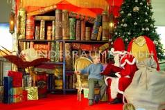 Weihnachtsdeko leihen